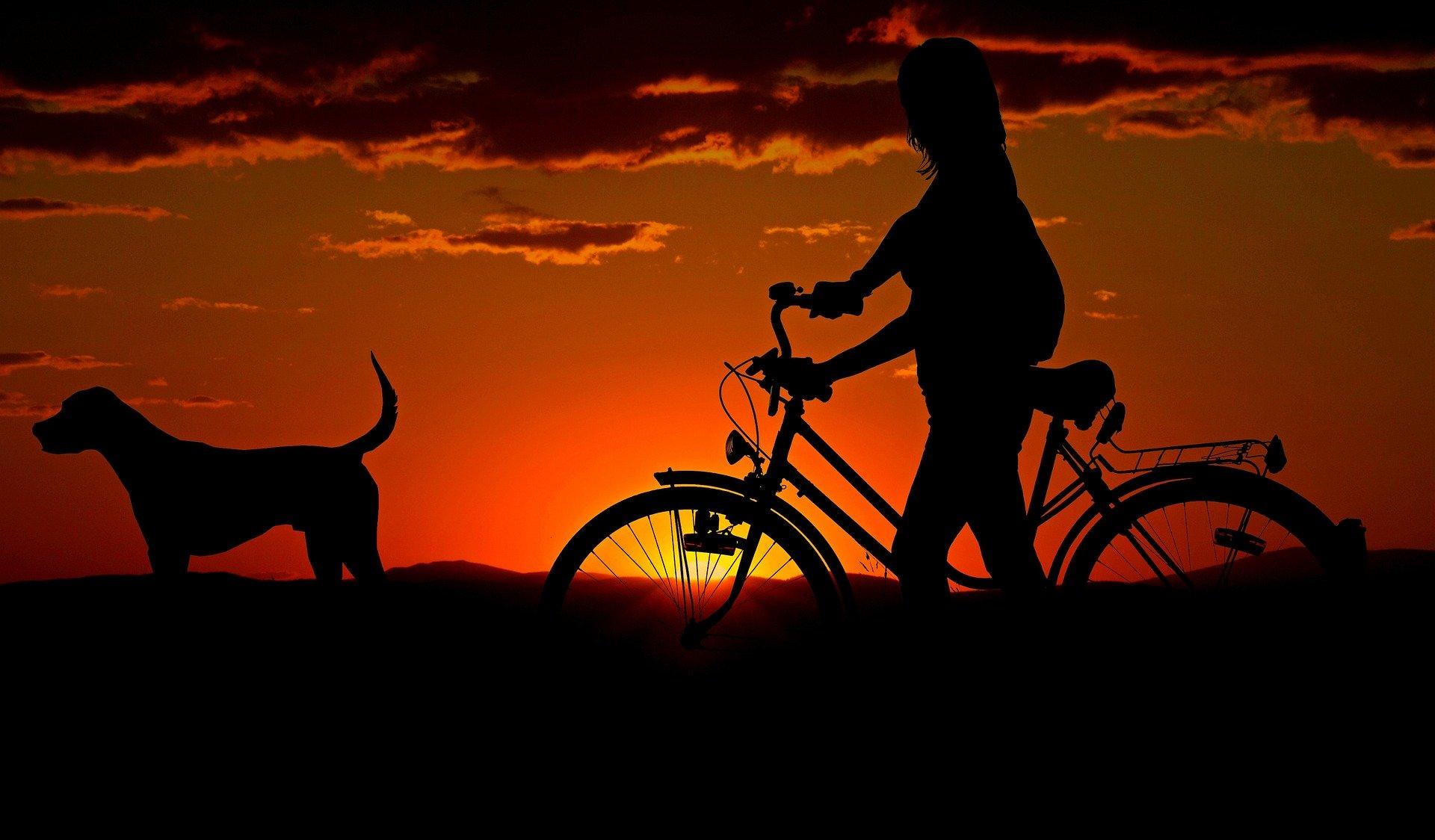 Uniknij kradzieży, zabezpiecz rower