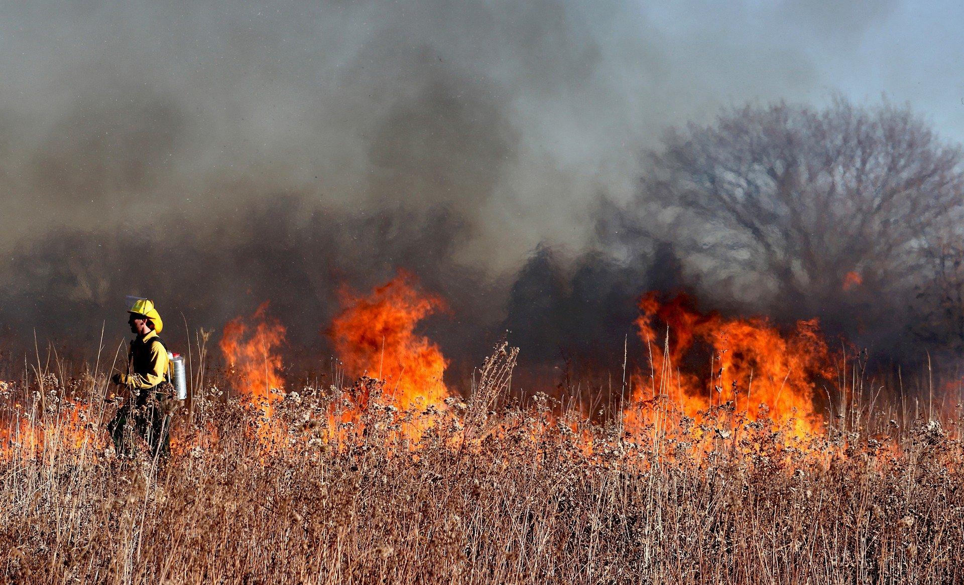 ARiMR przypomina: wypalanie traw grozi utratą dopłat