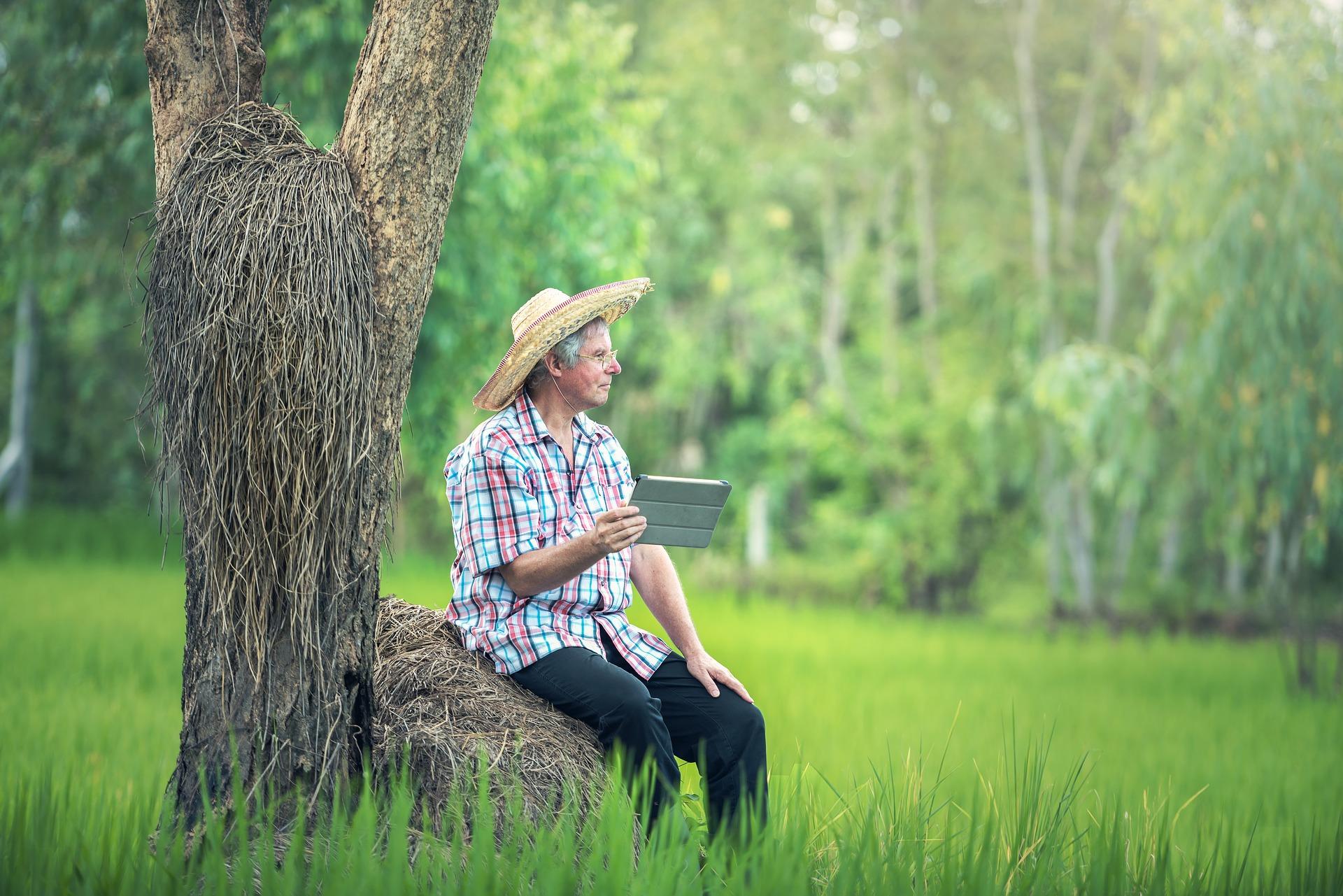 Wyszkolą rolników przez Internet – dziś Dolny Śląsk