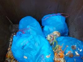 Wyrzucasz śmieci? Segreguj prawidłowo
