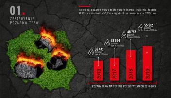 Chroń Ziemię przed pożarami traw